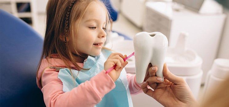 Dentisterie pédiatrique 1
