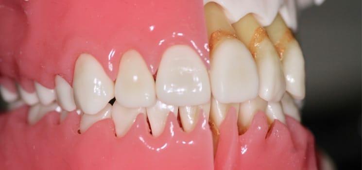 Dentisterie générale 5